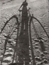 Bicycle_shadow
